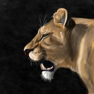 lioness4.png