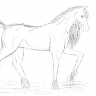 myhorse.png